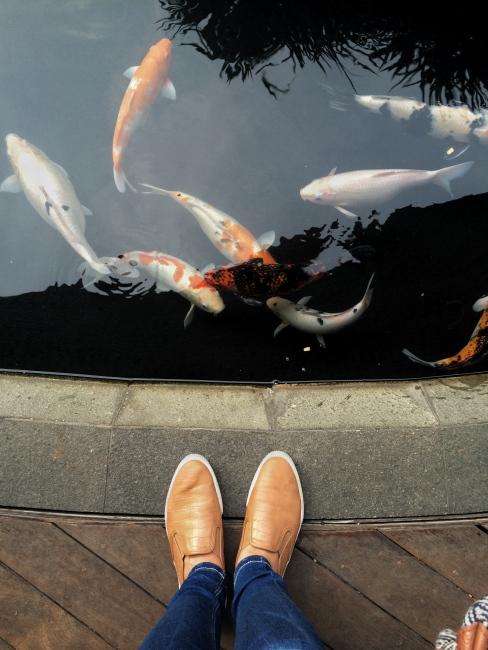 Shoes by Bershka